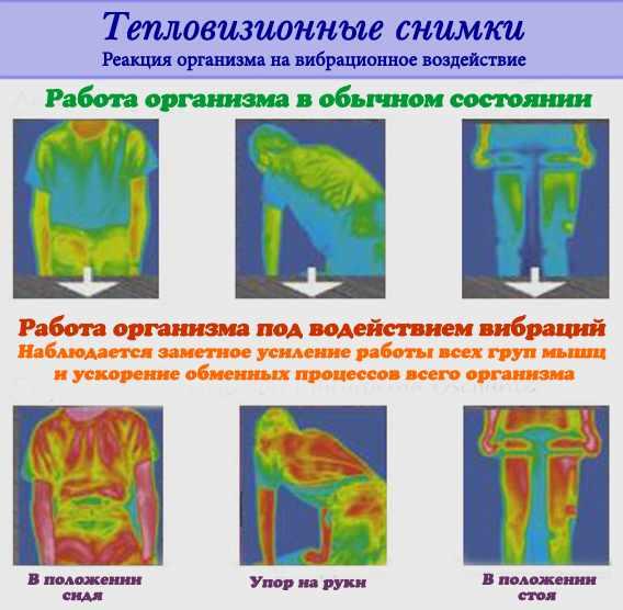 Mai multi Muschi, Mai putina Grasime, In Acelasi Timp, cum arde corpul tău grăsime pentru energie