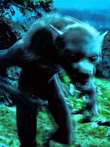 Loup Garou Harry Potter : garou, harry, potter, Funko, Figurine, Remus, Lupin, Werewolf, (Harry, Potter)