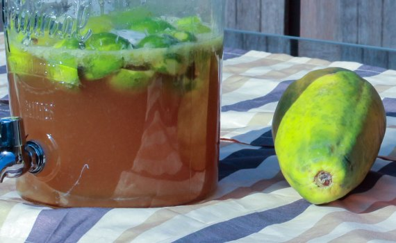 recept caipirinha caipirinhacaipirinha caipirinha maken caipirinha cachaca 51 cachaca braziliaanse cocktail