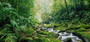 Kosta Rika – İçme Suyu Sağlamada Örnek Ülke
