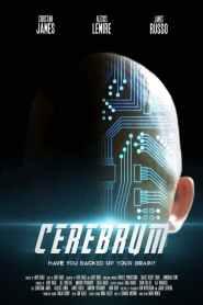 Cerebrum 2021