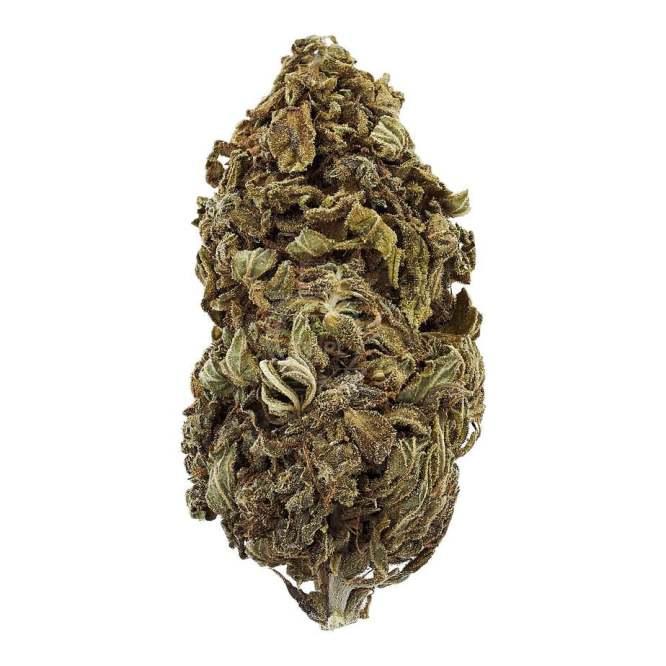 Susz Konopny 6% CBD Kaya 1g Legalna Medyczna Marihuana konopie siewne