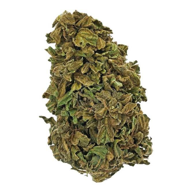 Susz konopny CBD 6% Keep Karma 1g Legalna Medyczna Marihuana konopie siewne