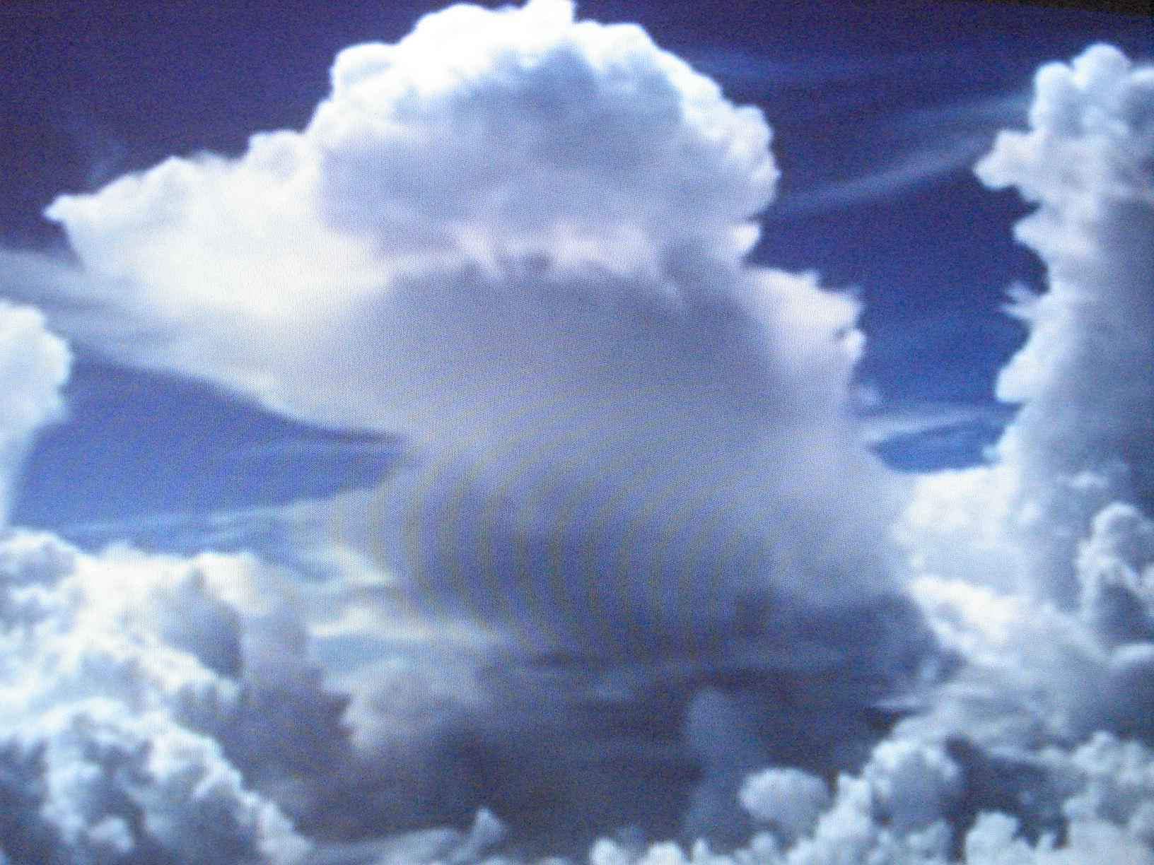Las nubes espectaculares, la caza de los peces espada, las ballenas, los lobos marinos, las morsas, incalculable número de animales de variadas especies, a disposición en un mismo video, en la misma pantalla.