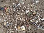 Detalles de la basura antrópica cotidiana en las playas de Mar del Plata sin limpiar...