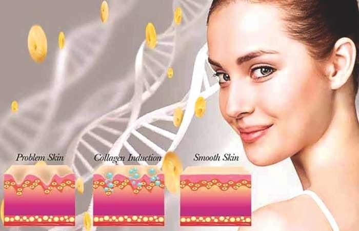Collagen là một thành phần không thể thiếu trong làm đẹp da