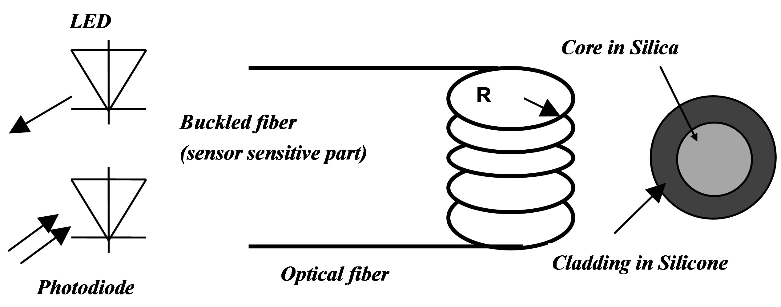 Flexible Optical Waveguide Bent Loss Attenuation Effects