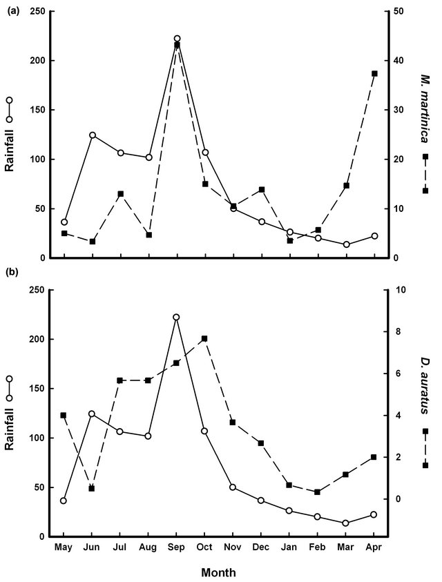 Influence of Rainfall Pattern in the Seasonal Variation of