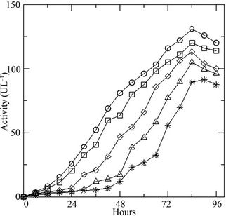 Modelling the Biomass Growth and Enzyme Secretion by the