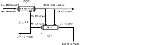 small resolution of schematic circuit for extracorporeal perfusion system using the hemofilter and the renal tubule cell assist device from tumlin j et al j am soc nephrol