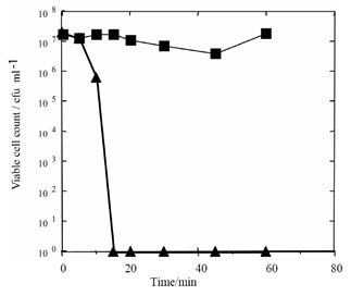 Electrochemical Analysis of the Redox State of Silver
