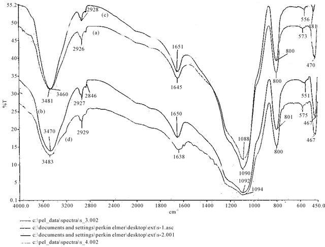 Adsorptive Interaction of Chiral Amino Acids on β