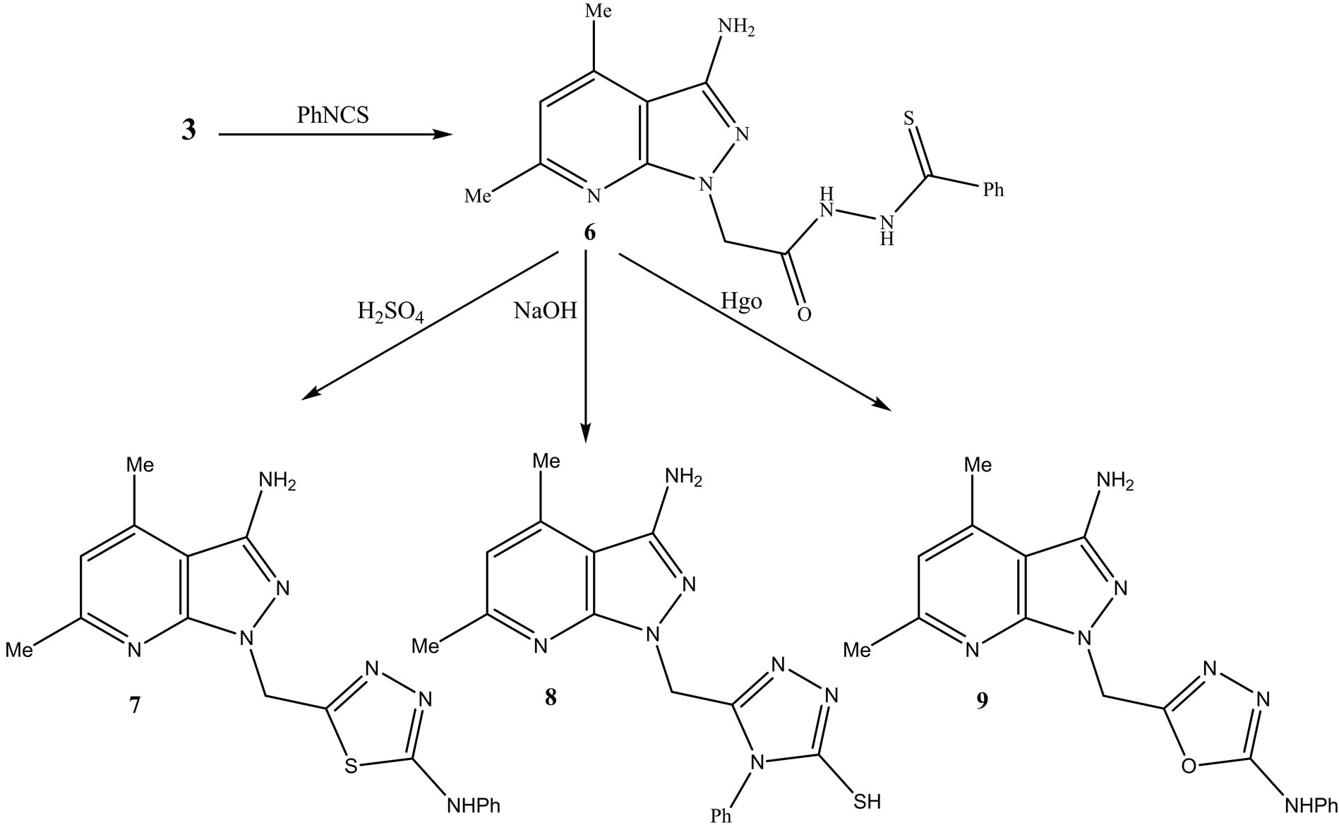 Docking Stu S Synthesis And Evaluation Of Antioxidant