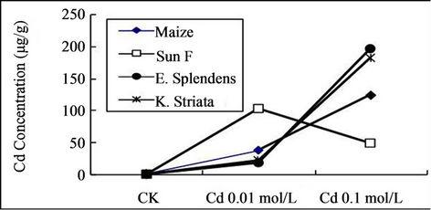 Development of Profitable Phytoremediation of Contaminated