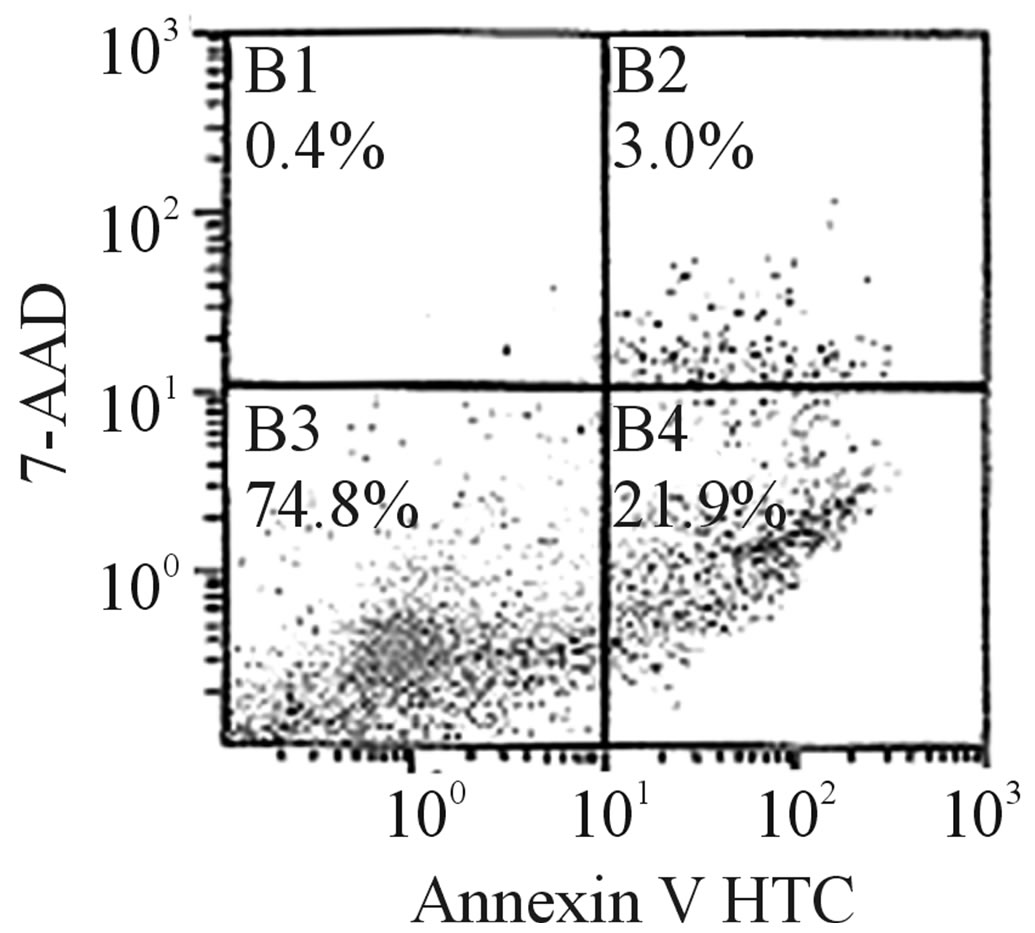 Pharmacological evaluation of a novel enhydrazone ester