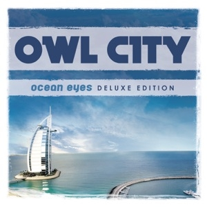 download - Owl City - On the Wing