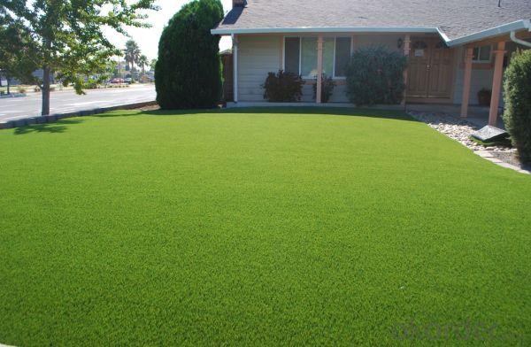outdoor green landscape artificial