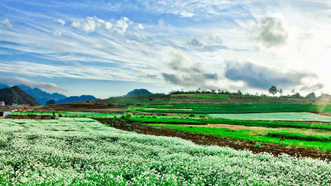 Khu du lịch quốc gia Mộc Châu