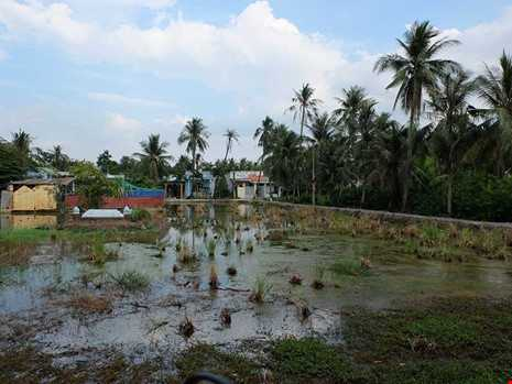 Sài Gòn: Đại gia đất nhưng... vẫn nghèo