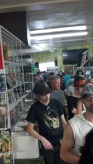 Line for Grimly signing 3 COMP