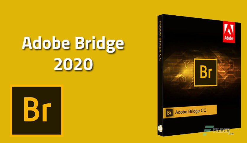 Adobe Bridge 2020 v10.1.1.166