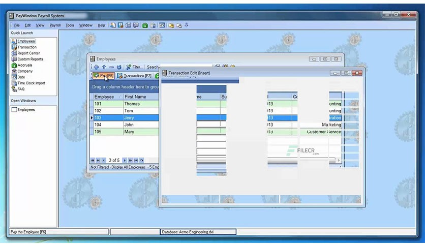 Zpay-PayWindow-Payroll-System-Free-download-02