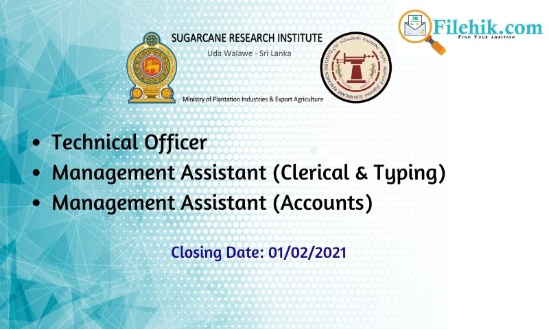 Technical Officer, Management Assistant