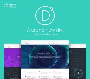 Divi WordPress Drag and Drop Theme