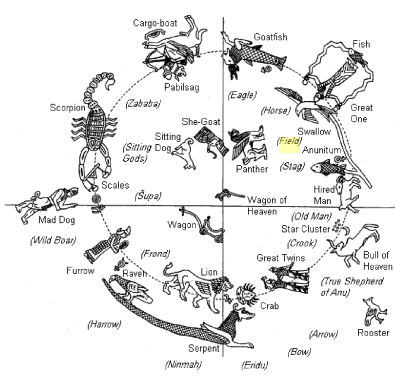 Scorpion Life Cycle For Kids