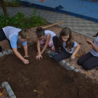 Está programado que los alumnos rieguen y monitoreen la huerta durante las clases.