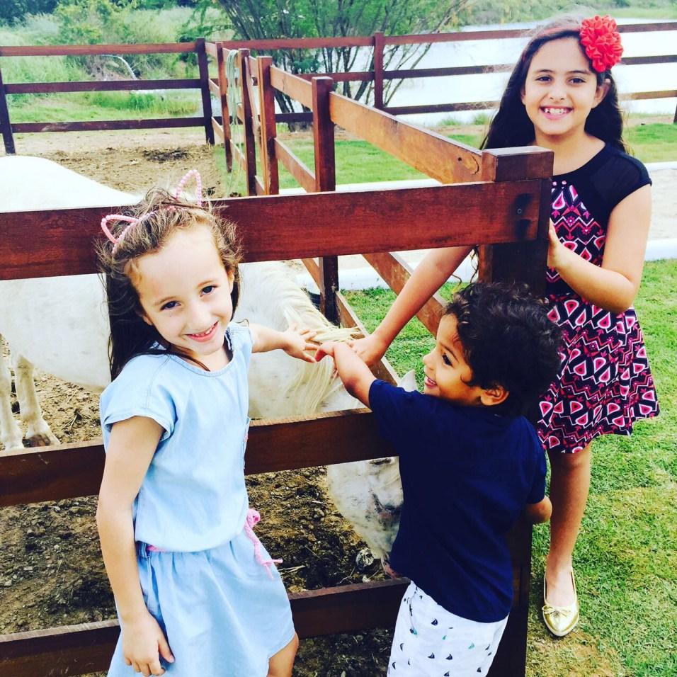 """""""Ao cuidar dos animais, a criança trabalha o senso de responsabilidade"""", diz pediatra. Foto: IAPE"""