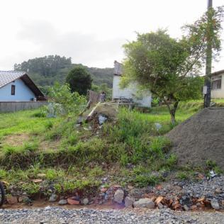 Terreno da antiga moradia da dona Ester era tomado por vegetação.[Foto: Harry Metzner].
