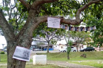 Na cidade de São Cristovão, jovens de Lages penduraram os livros em árvores