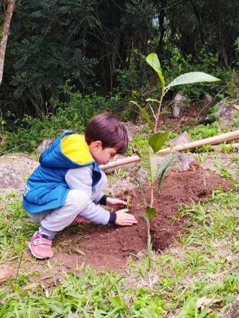 Crianças ficaram felizes em plantarem sua mudas de árvores