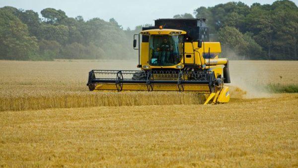 Colheitadeira: vantagens da força mecânica em propriedades agrícolas