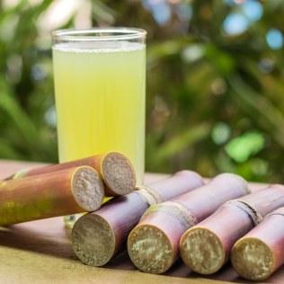 Garapa é a base da cachaça, destilado mais consumido no Brasil