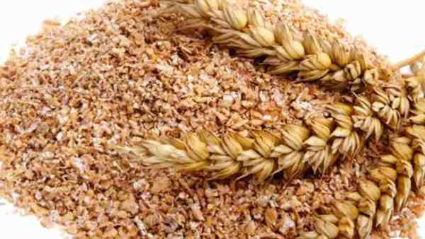 Farelo de trigo é versátil na culinária e benéfico para a saúde