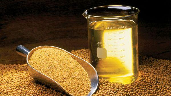 O óleo de soja faz bem à saúde se consumido de forma correta