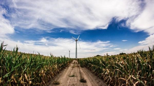 Revolução Verde veio para aprimorar as técnicas básicas da agricultura