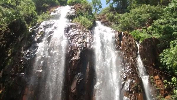 Ecoturismo é segmento turístico que visa a preservação da natureza