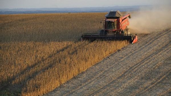 Agrofit contém informações sobre agroquímicos disponíveis no mercado