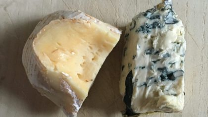 Blue cheese são os queijos que utilizam fungos em sua composição