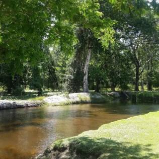 Igarapé é um pequeno curso d'água típico da região amazônica