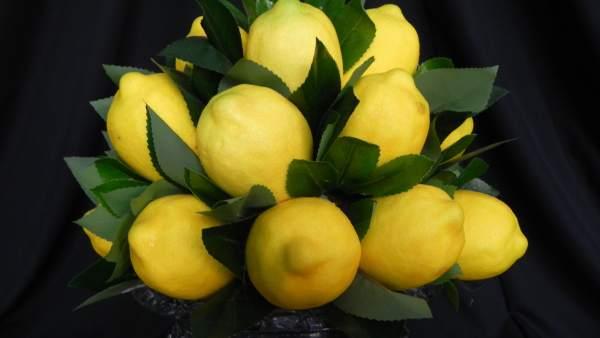 Limão siciliano é o mais popular e consumido na Europa