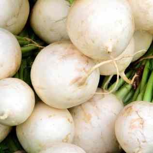 Nabo, o vegetal versátil que serve para alimentação e até adubação