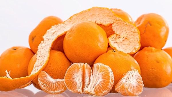Tangerina é fruta asiática que se adapta a vários tipos de solo