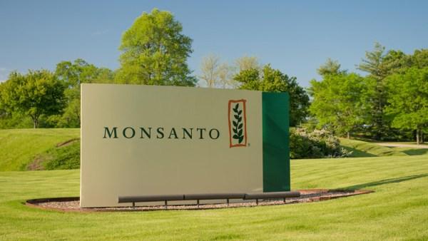 Monsanto é pioneira em biotecnologia agrícola no Brasil