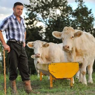 Agricultor é o profissional que trabalha na agricultura e criação de animais