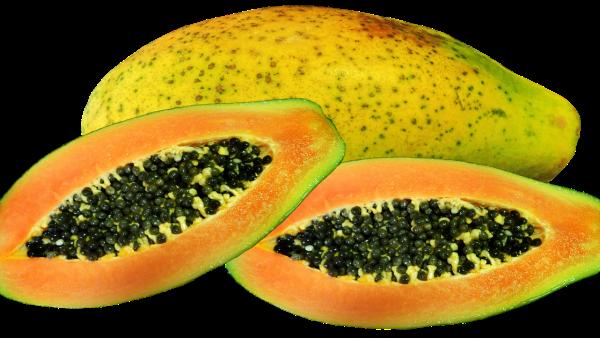 Mamão é nutritivo e um dos principais frutos exportados pelo Brasil
