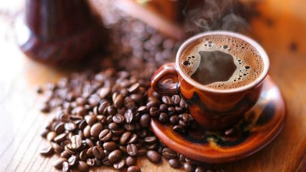 Café, fruto do cafeeiro, produz uma das bebidas mais amadas do mundo
